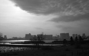 Tokyo's Bay